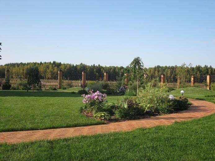 Готовый посевной газон