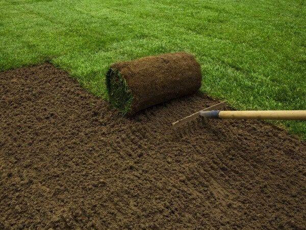 Цены на укладку рулонного газона