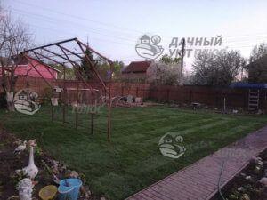 Рулонный газон Наро-Фоминск