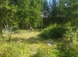 Расчистка и уборка участка в Одинцово