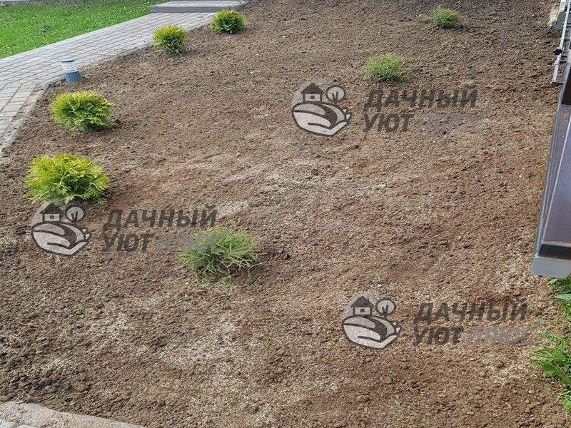 Подготовленный посевной газон