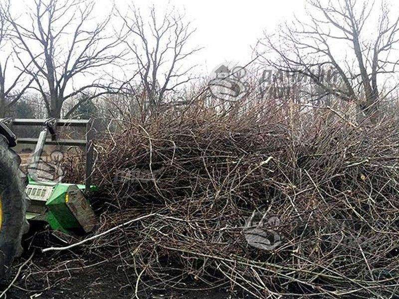 Процесс вырубки кустарника и мелколесья