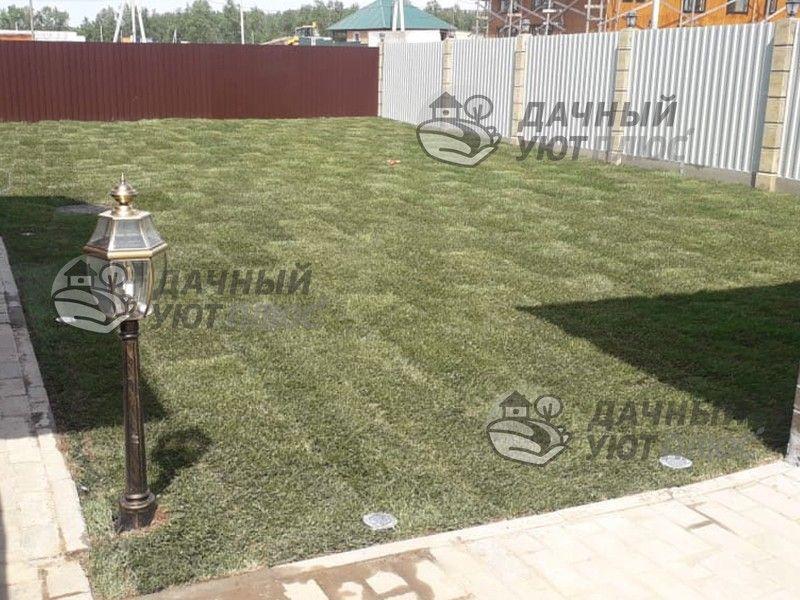 Рулонный газон после укладки