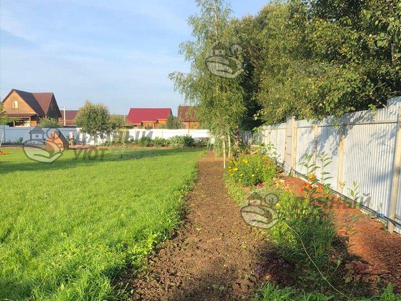 Обустроенный посевной газон